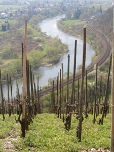ザール斜面2004年撮影